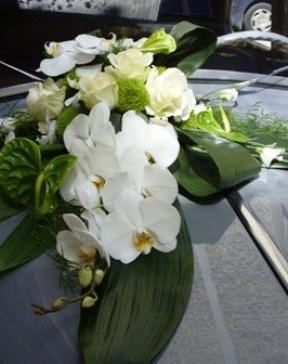 décoration capot voiture